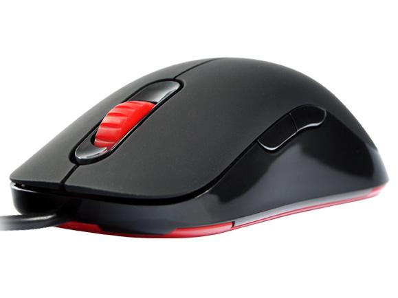 Zowie AM-GS Pro Gaming mouse